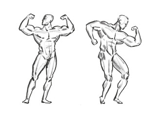 Bodybuilder muscle male, sketch. Gym, sport concept