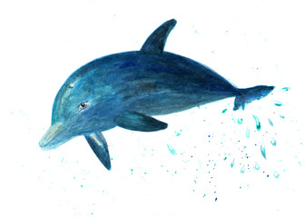 The dolphin jumps out of the water. Watercolor illustration. Dolphin in the jump. Fashionable background for print, fabric, shirt.