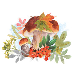 Watercolor autumn arrangement of fall leaves and mushrooms. Wild mushrooms, rowan berries, grass and leaves. Botanical illustration. Mushrooms watercolor template for vintage greeting card.