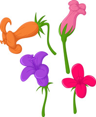 funny orchid flower cartoon