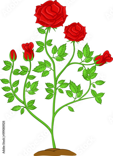 """funny flower rose plants cartoon"" Stock image and royalty ..."