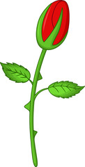 cute flower rose cartoon