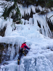 mountain guide ice climbing in Switzerland