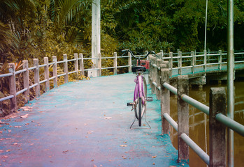 Vintage  violet  bicycle on the bridge  at tropical rainforest  adventure and romantic  for  travel  background