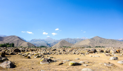 Anicent site of petroglyphs near Cholpon-Ata,  Kyrgyzstan during summer