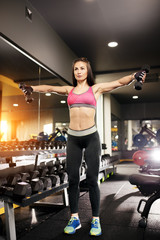 Athletic young woman trains her shoulders using dumbbells in the gym.