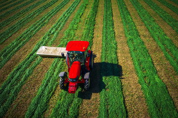 Wall Mural - Tractor mowing green field, aerial drone view. Farming. Agriculture.