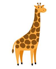 Giraffe. Vector cartoon tall giraffe character, cute african animal with spots on white