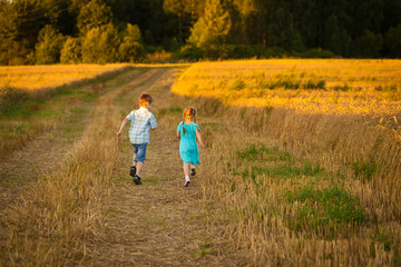 Children in wheat field on warm and sunny summer evening