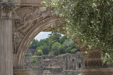 Famous Palatine Hill ancient ruins through the Arch of Septimius Severus in Roman Forum