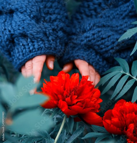 Hands In A Large Knitted Rough Blouse Near Blooming Flowers Of Panda