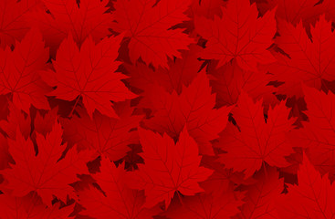 Canada day design of red maple leaves background with copy space vector illustration