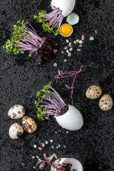 Fresh watercress salad in eggshell and quail eggs on a wet black background..