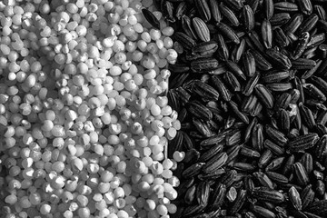 Monochrome Texture of Coarse black rice separated with wheat millet porridge The concept of proper nutrition and healthy lifestyle. Top view, close-up as background or texture