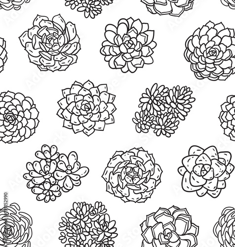 Succulents outline seamless pattern Ideal for coloring page Stock