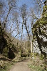 Wanderweg im Wolfstal