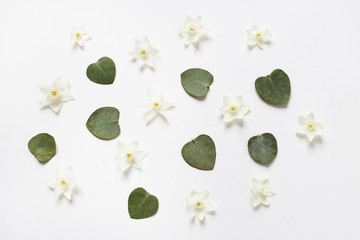 Styled stock photo. Feminine spring desktop composition with white narcissus, daffodil flowers and dry green eucalyptus leaves on white background. Floral pattern. Empty space. Flat lay, top view.