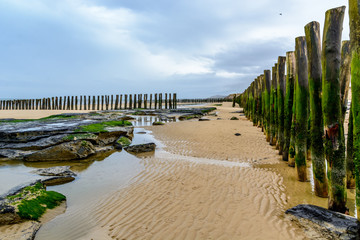 Wooden breakwater ons beach of Wissant, cote opale, France