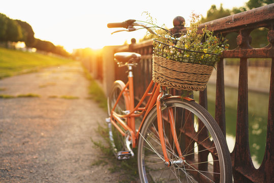 Beautiful bicycle with flowers in a basket stands on the street