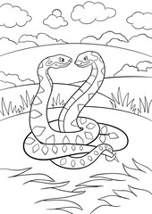 Coloring pages. Two little cute vipers smile.