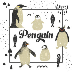 Baby Shower Design with Cute Penguins. Creative Hand Drawn Childish Penguin Background for Decoration, Invitation, Cover. Vector illustration