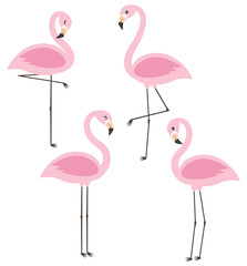 Vector set with four cute cartoon pink flamingos