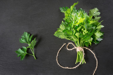 Fresh green parsley in bunch on black slate background.Copy space. Top view.
