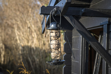 Bird feeder cage on a wooden shed
