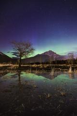 Aurora Borealis over scenery with mountain peak in Banff National Park, Alberta, Canada