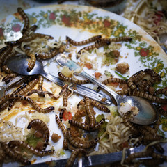 A plate full of decaying food and worms.