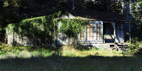 Abandoned building at Lairds Landing, Tomales Bay, Point Reyes National Seashore, CA.