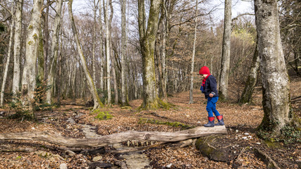 Side view of boy walking on lying wood in forest, Bois de Chene, Genolier, Switzerland
