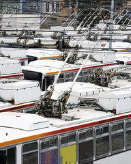 Rows of electric powered buses, San Francisco, California.