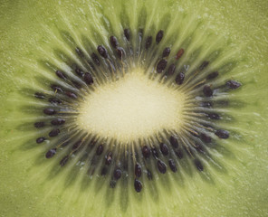 Macro View of the Inside of a Kiwi