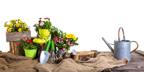 garten set Pflanzen