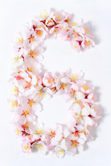 Arabic numera six lined with flowers on a white background