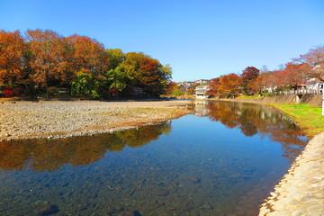 秋の河原の風景3