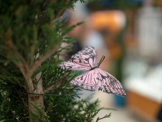 Pink butterfly ornament displayed on a tree