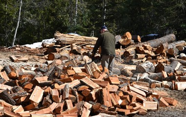 Man sawing logs into firewood
