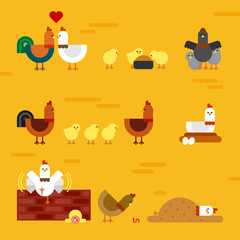funny chicken family vector flat design illustration set