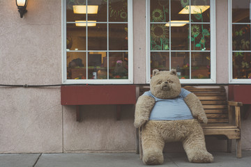 Large Cute Teddy Bear Sitting an a Wooden Bench in Washington