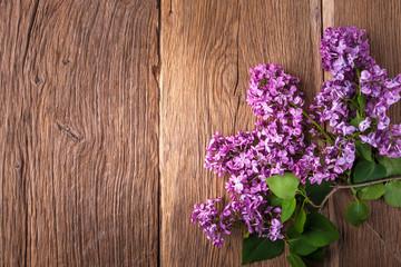 Foto auf Leinwand Flieder Lilac flowers background