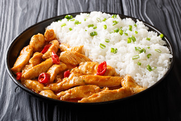 Thai street food: chicken panang curry with garnish of rice close-up on a plate. horizontal