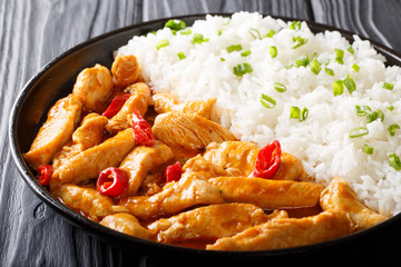 Delicious Thai chicken panang curry with garnish of rice close-up. horizontal