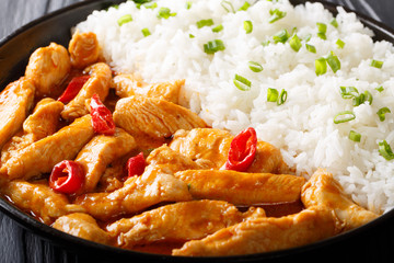 chicken panang curry with garnish of rice close-up. horizontal