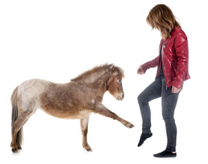Falabella miniature horse and girl