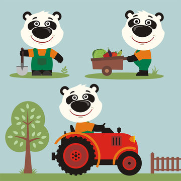 Set of funny panda bear farmer with shovel, with wheelbarrow with vegetables, in farm tractor. Collection of cartoon panda bear is working on the farm.