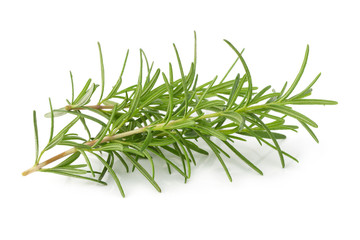 Fresh raw Rosemary isolated on a white background