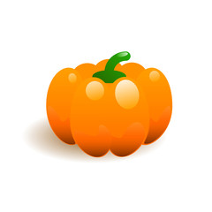Ripe pumpkin vector illustration
