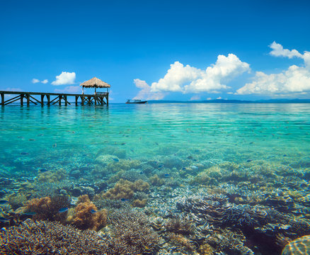Beautiful coastline landscape with coral reef in Indonesia underwater and over water
